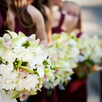 Destination Wine Country Weddings - Wedding Planner in San Diego, California