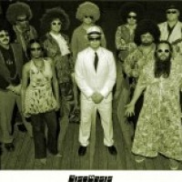 DiscOasis - Disco Band / Wedding Band in Huntsville, Alabama