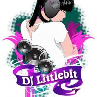 DJ Littlebit - Bar Mitzvah DJ in St Petersburg, Florida