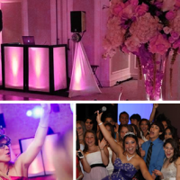 DJ Luna Entertainment - Wedding DJ / Mobile DJ in Hollywood, Florida