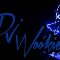DJ Wookie - Mobile DJ / Radio DJ in Salisbury, Maryland