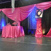 Dpalacios Events Rentals And Deco - Set Designer in ,