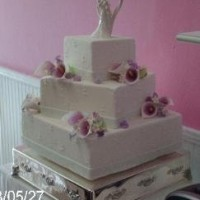 Dream Cakes and Events - Cake Decorator in Greenfield, Massachusetts