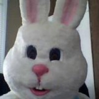 Easter Bunny for Hire - Limo Services Company in Brigham City, Utah