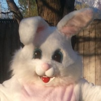 Easter Bunny in Seattle - Face Painter in Auburn, Washington