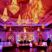 Eggsotic Events - Lighting Company in ,