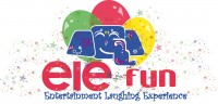 Elefun Entertainment - Cake Decorator in Kingston, New York