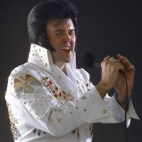 Elvis 2 - Elvis Impersonator in Orlando, Florida