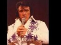 Elvis - Rock and Roll Singer in Lexington, Kentucky