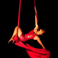 En L'Air Aerial Dance Company - Aerialist in Maryland Heights, Missouri