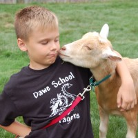 Enchanted Animal Parties - Petting Zoos for Parties in Keene, New Hampshire