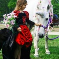 Enchanted Pony Parties - Children's Party Entertainment in Savannah, Georgia