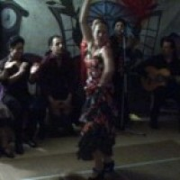 Gipsy Flamenco - Flamenco Group / Salsa Band in La Jolla, California