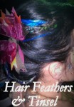 Hair Feathers and Tinsel