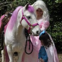 Fairytale Ponies - Pony Party in East Point, Georgia
