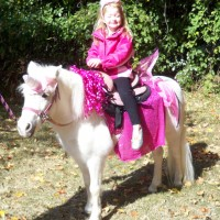 Fairytale Pony Parties - Pony Party in Lancaster, Ohio