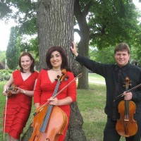 Fantasy Strings - String Quartet in Flint, Michigan