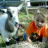 Feathers To Fur...Animal Discovery & More! - Petting Zoos for Parties in Warwick, Rhode Island