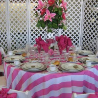 Festive Occasions Party Rentals - Tables & Chairs in ,