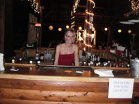 """Flair on the Fly"" Bartending Service"