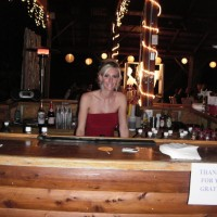 """Flair on the Fly"" Bartending Service - Casino Party in Sedalia, Missouri"