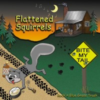 Flattened Squirrels - Country Band in Eden, North Carolina
