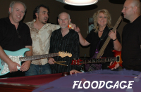 Floodgage - Blues Band in Austin, Texas