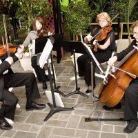 Fontainebleau Strings - String Quartet in Oxford, Ohio