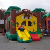 Fun Functions/Bounces To Go - Bounce Rides Rentals in Winston-Salem, North Carolina