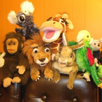 Fuzzy World Puppets - Puppet Show in Durham, North Carolina