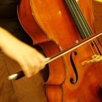 Gabri Cello - Classical Ensemble in Springfield, Massachusetts