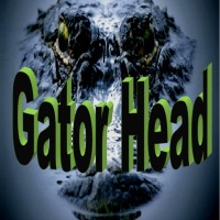 Gator Head - Bands & Groups in Norfolk, Virginia