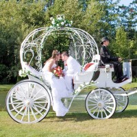 Grand Carriages LLC - Horse Drawn Carriage in Racine, Wisconsin