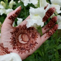 Half Moon Henna - Henna Tattoo Artist in Portland, Oregon