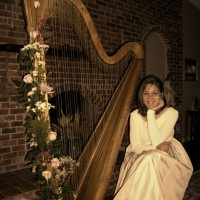 Harpist Bridget Ranieri - Viola Player in Butler, Pennsylvania