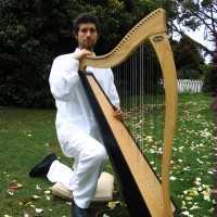 Harpist For The Monterey Bay/ Bay Area - Harpist in Santa Cruz, California
