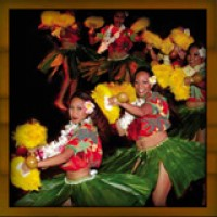 Hawaiian Entertainment & Catering Company DC - Hula Dancer in Alexandria, Virginia