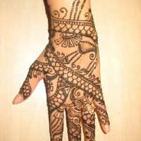 Henna Creations - Temporary Tattoo Artist in Tampa, Florida