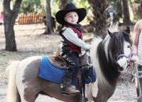 Horse Power for kids