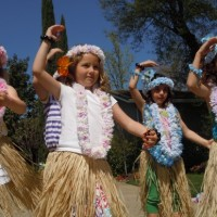 Hula 4 Fun - Hawaiian Entertainment in Sacramento, California