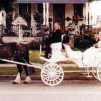 International Weddings & Carriage Rides - Horse Drawn Carriage in Niagara Falls, New York