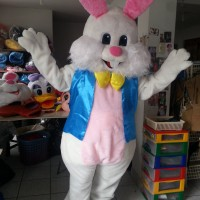 Its A Bunny Today - Easter Bunny / Costumed Character in Dallas, Texas