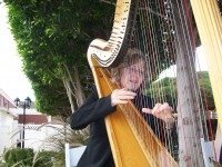 Jill Pack - Harpist in Mesa, Arizona