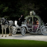 Jim & Becky's Horse & Carriage, Inc - Princess Party in South Milwaukee, Wisconsin