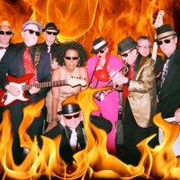 Jive Jump & Wail - Wedding Band in Winslow, New Jersey