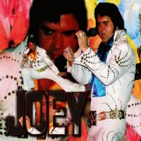 Joey Franklin is a Touch of Elvis - Elvis Impersonator in Las Vegas, Nevada