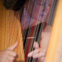 Julie Miller Money - Harpist in Danville, Virginia