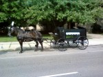 Horse Drawn hearse Michigan