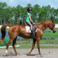 Jupiter Equestrian Center - Pony Party in Fort Lauderdale, Florida