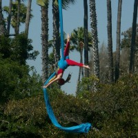 Kara Shriver - Aerialist / Stilt Walker in Las Vegas, Nevada